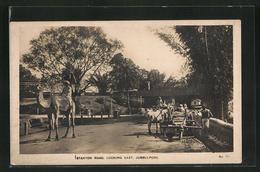 AK Jubbolpore, Stanyon Road, Looking East - Indien