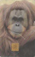 REPUBLICA CHECA. FAUNA. Orangutang II. C212B, 59//11.97. (101) - Tarjetas Telefónicas