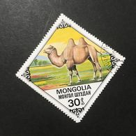 ◆◆◆Mongolia  1978   Bactrian Camels      30M   USED   AA3640 - Mongolia