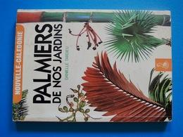 NATURE = PALMIERS De Nos Jardins - Autres