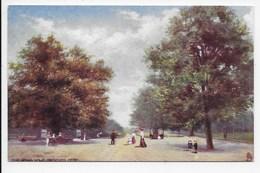 The Broad Walk, Regents Park - Tuck Oilette 7194 - London