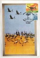 India  2007 Cranes Birds Jaisalmer Special Cancellation Card  # 18735   D  Inde Indien - Grues Et Gruiformes
