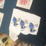 USA UCCELLI TRE VALORI - Postzegels