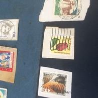 USA FIORI ROSSO - Postzegels