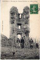 01. Miribel. Ruines Du Vieux Château Du Mas Rillier - Autres Communes