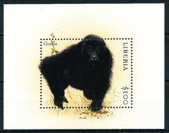Liberia Nº HB-284 Nuevo - Liberia