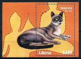Liberia Nº HB-234 Nuevo - Liberia