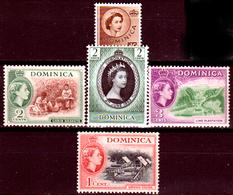 Dominica-014 - Emissione 1953-54 (+) LH - Senza Difetti Occulti. - Dominica (...-1978)
