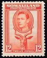 Somaliland Prot. 1938 12 A. SG100 - Mint Previously Hinged - Somalilandia (Protectorado ...-1959)