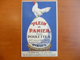 """CPA - """"Plein Le Panier"""" Pour Poulettes - """"De Mand Vol"""" Voor Jonge Hennen - SMG Gembloux - Publicité"""