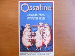 CPA - Ossatine, Aliment Idéal Phosphaté Pour L'engraissement Rapide Des Porcs - SMG Sélections Maxima Gembloux - Publicité