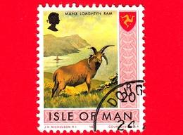 Isola Di MAN - Usato - 1973 - Paesaggi - Animali - Pecore - Manx Loaghtyn Ram (Ovis Orientalis Aries) - 20 P - Isola Di Man
