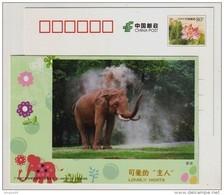 Mud Bath Elephant,China 2011 Guangzhou Zoo Lovely Hosts Animal Advertising Pre-stamped Card - Elephants