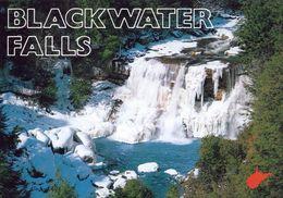 1 AK USA West Virginia * Blackwater Falls State Park Bei Der Stadt Davis Im Tucker County * - Etats-Unis