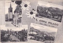 S. ANNA PELAGO   VG  AUTENTICA 100% - Pistoia