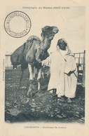 CPA Campagne Du Maroc (1907-1908) Casablanca Conducteur De Chameau Timbre - Casablanca