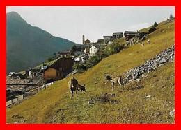 4 CPSM/gf (05) SAINT-VERAN.  Vue Pittoresque / Un Coin Du Village / Une Rue Du Village / Fontaine Rustique...B805 - Autres Communes