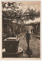 OLD BAZAAR, TURKISH OLD TOWN, RHODES, GREECE. UNPOSTED - Greece