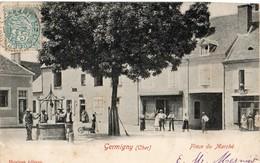 Germigny  18   La Place Du Marché Tres Tres Animée-Epicerie-Boucherie Et Café Et Le Puit Au Centre - Otros Municipios