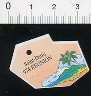 Magnet Le Gaulois Carte Géographique Département Réunion Saint-Denis 01-mag3 - Magnets
