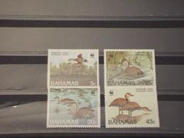 BAHAMAS - 1988 WWF UCCELLI 4 VALORI - NUOVI(++) - Bahamas (1973-...)