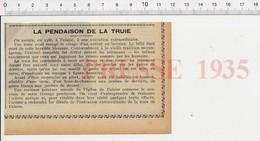 Presse 1935 Exécution De La Truie Eglise Falaise Calvados Gibet Pendaison Moyen-âge Cochon Animal Tribunal Justice 226V - Unclassified