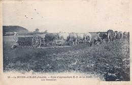 85. LA MOTHE ACHARD. CPA. ECOLE D'AGRICULTURE N. D. DE LA FORET. LES SEMAILLES. ANNEE 1939 - Cultures