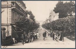 Lot 5 De 36 Cartes Postales France Uniquement , Tous Les Scans Dans L'annonce - Postcards