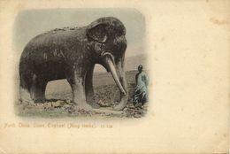 China, Ming Tombs North China, Stone Elephant (1899) Postcard - China