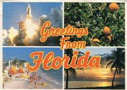 GREETINGS FROM FLORIDA. COLORFUL SCENES FROM TROPICAL FLORIDA. U.S.A. POSTAL CPA CIRCULATED 1983 MIAMI -LILHU - Estados Unidos