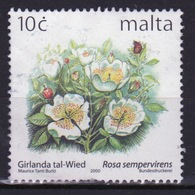 Malta 1999 Single 10c Stamp To Celebrate Maltese Flowers. - Malta