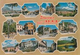 12548-SOUVENIR DELL'IRPINIA-FG - Avellino