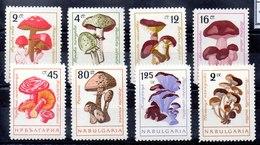 Serie De Bulgaria Nº Yvert 1099/06 ** SETAS (MUSHROOMS) - Bulgaria