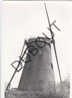 ARDOOIE  Molen / Moulin - Originele Foto Jaren '70 A.Carre (Q120) - Ardooie