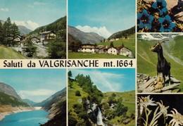 9432-SALUTI DA VALGRISENCHE(AOSTA)-FG - Saluti Da.../ Gruss Aus...