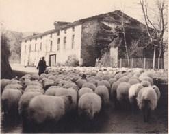 MONTEE Ai PUERTO De ECHECARATE 1949 Photo Amateur Format Environ 7,5 Cm X 5,5 Cm - Lugares