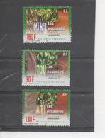 POLYNESIE Française - Flore - Arbres - Essences Nobles : Le TOU, Le Ati, Le Miro - French Polynesia