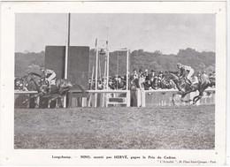 Longchamp - NINO, Monté Par Hervé, Gagne Le Prix Du Cadran - 19 X 14 Cm - Equitation