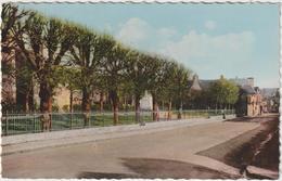 Manche : SAINT   JAMES  :    Vue , Le  Monument  Aux  Morts Et Rue De  Pontorson - France
