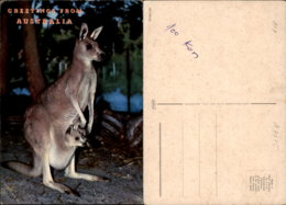 AUSTRALIA POSTCARD - Non Classés
