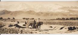 L'Ourika, Marrakech, Carte Postale Panoramique 21/9 Cm. - Marrakech