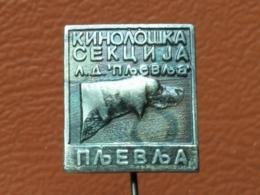 LIST 115 - CHIEN, DOG, PLJEVLJA, MONTENEGRO - Animals