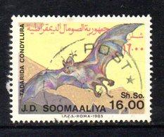APR846 - SOMALIA 1985 , Yvert N. 331  Usato . PIPISTRELLO - Somalia (1960-...)