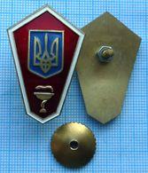 UKRAINE /  Badge / The Medicine.  Medical  College. Graduate. - Medical