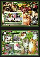 Burkina Faso, 2019. [bf1916] Cats, Imperf - Hauskatzen