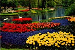 Netherlands Holland In Flower Decoration - Other
