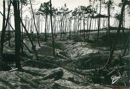 Cpsm SOULAC SUR MER 33 A La Libération - La Forêt Après Le Bombardement - Soulac-sur-Mer