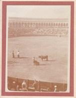 SEVILLE  ESPAGNE 1909 Corrida Photo Amateur Format Environ 7,5 X 5,5 Cm - Lugares