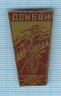 USSR / Badge / Soviet Union / RUSSIA. Dombay . Alpinism Mountaineering Tourism Caucasus. Edelweiss 1970s - Alpinismus, Bergsteigen