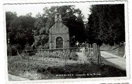 Amonines - Chapelle De La Drève - Edition Mosa N° 1314 - 2 Scans - Erezée